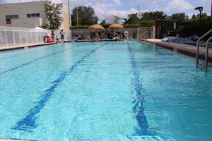 Miami Infant Drowning
